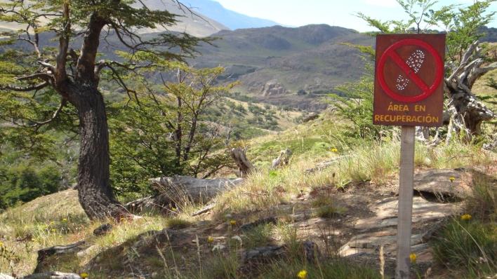 """As trilhas têm diversas """"áreas em recuperação"""""""